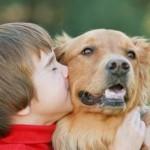 427493 crianças e animais fotos 6 150x150 Crianças e animais: fotos