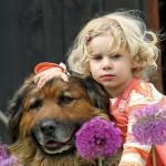 427493 crianças e animais fotos 8 150x150 Crianças e animais: fotos
