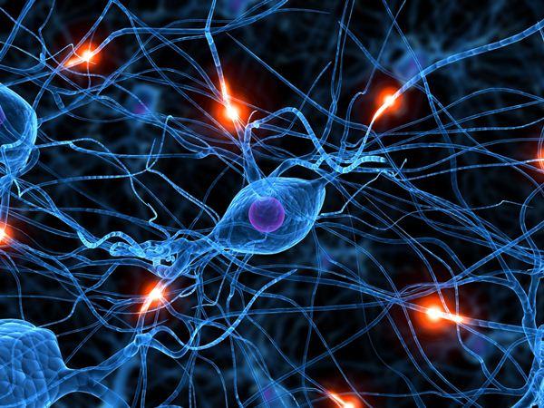 428551 Substâncias fortalecem e restauram a comunicação entre os neurônios Nutrientes que ajudam a proteger o cérebro