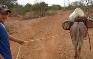 Dilma discute o problema da seca com governadores do nordeste