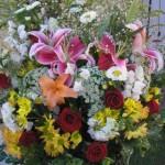 434669 Os mais belos arranjos de flores 08 150x150 Os mais belos arranjos de flores: fotos