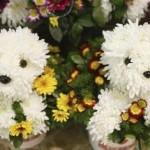 434669 Os mais belos arranjos de flores 10 150x150 Os mais belos arranjos de flores: fotos