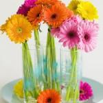 434669 Os mais belos arranjos de flores 11 150x150 Os mais belos arranjos de flores: fotos