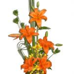 434669 Os mais belos arranjos de flores fotos 02 150x150 Os mais belos arranjos de flores: fotos