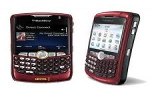 Blackberry Curve Nextel: onde comprar, preços