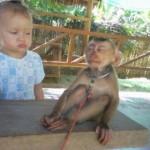452252 As fotos mais engraçadas do mundo 14 150x150 As fotos mais engraçadas do mundo