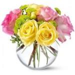 459233 Fotos de buquês de flores 18 150x150 Fotos de buquês de flores