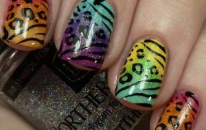 Fotos de unhas decoradas coloridas