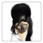 459946 Fotos de gatos fantasiados 24 150x150 Fotos de gatos fantasiados