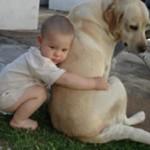461289 Fotos de bebês com cachorros 13 150x150 Fotos de bebês com cachorros