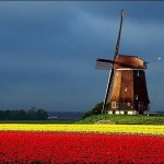 470111 Fotos da Holanda país das tulipas 09 150x150 Fotos da Holanda, país das tulipas