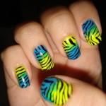 477493 Unhas de Zebra fotos passo a passo5 150x150 Unhas de Zebra: fotos, passo a passo
