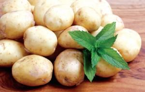 Lasanha de batata