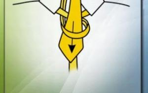 App para dar nó em gravata