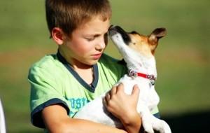Convívio com animais de estimação torna criança mais saudável, diz estudo