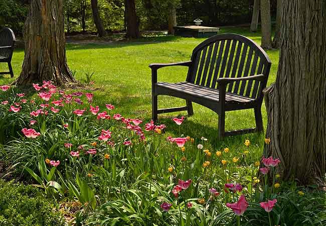 floridos e bonitos 06 150×150 Jardins floridos e bonitos fotos