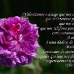 489438 Mensagens de Chico Xavier para Facebook 13 150x150 Mensagens de Chico Xavier para Facebook