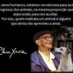 489438 Mensagens de Chico Xavier para Facebook 16 150x150 Mensagens de Chico Xavier para Facebook