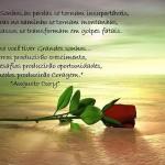 490427 Mensagens de Augusto Cury para Facebook 01 150x150 Mensagens de Augusto Cury para Facebook