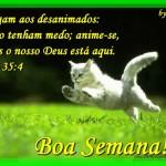 495985 Mensagem de Boa Semana para facebook 08 150x150 Mensagem de Boa Semana para facebook