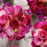 497911 Buquê de noiva dicas de flores fotos 07 150x150 Buquê de noiva, dicas de flores, fotos