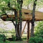 508528 casa da arvore fotos 15 150x150 Casa da árvore: fotos