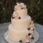 508669 Bolo rendado de casamento fotos 17 150x150 Bolo rendado de casamento: fotos