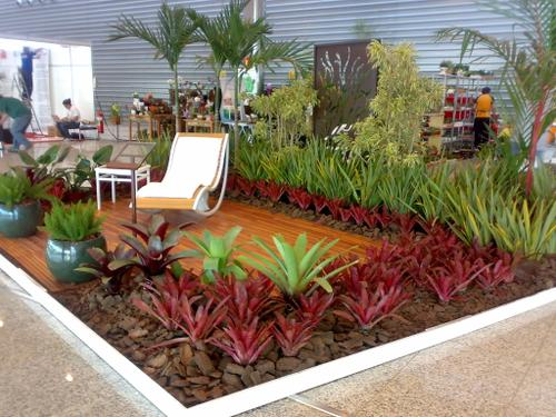 Os jardins tropicais podem ser montados em vários locais da casa