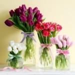 513775 Os móveis ficam muito mais bonitos com flores de primavera Foto divulgação. 150x150 Flores da primavera para decoração: fotos, dicas