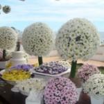 517809 Casamento decorado com flores do campo dicas fotos 12 150x150 Casamento decorado com flores do campo: dicas, fotos