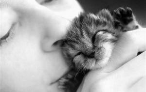 4 de outubro: Dia dos animais