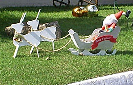 de jardim para natal fotos dicas 2 150×150 Decoração de jardim para
