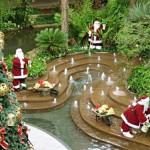 528520 decoracao de jardim para natal fotos dicas 5 150x150 Decoração de jardim para natal: fotos, dicas