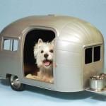 606177 Casinhas de cachorro diferentes fotos 8 150x150 Casinhas de cachorro diferentes: fotos