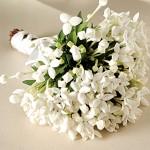 642358 O buquê branco e verde é um clássico. 150x150 Buquês de noiva simples: fotos