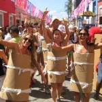 670675 Fantasias criativas de Carnaval 2014 10 150x150 Fantasias Criativas de Carnaval 2014