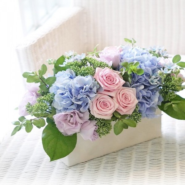 Flores e plantas dentro de casa as esp cies indicadas - Ambientador natural para casa ...