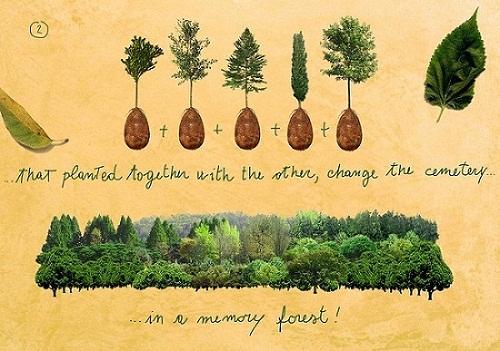 Capsula transforma defuntos em árvores