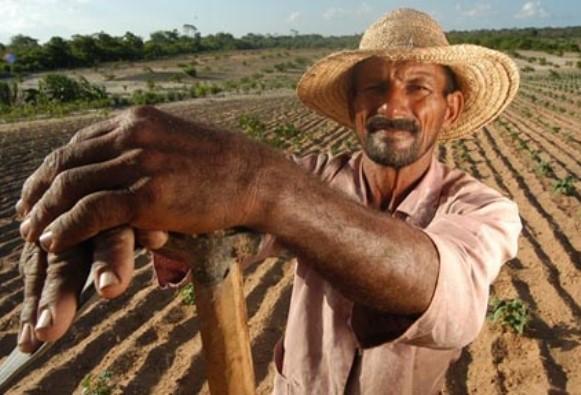 Como financiar com o Pronaf Agrícola