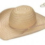Como Decorar Chapéu de Palha 150x150 Como Decorar Chapéu de Palha