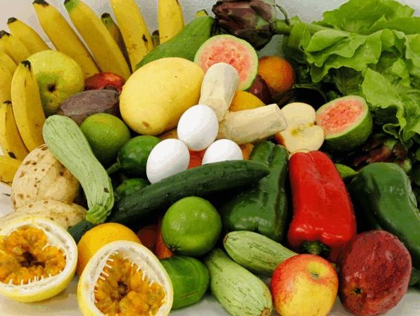 Faculdade de Nutrição a Distancia Curso EAD