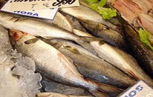 Peixes: Quando é Seguro Consumí-los