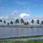 Pontos Turisticos Guiana Francesa10 150x150 Pontos Turísticos Guiana Francesa