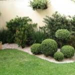 foto plantas para jardim de casa 150x150 Fotos de Jardins de Casas