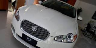 Jaguar no Brasil