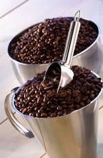 Curso degustação de café