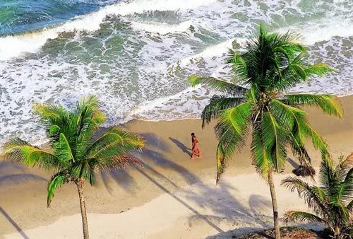 Praia Tambaba Naturismo