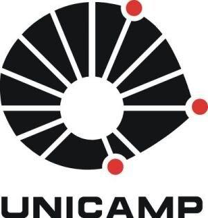 Pós Graduação Unicamp - Cursos