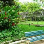 vista com carramanchao 150x150 Fotos de Jardins de Casas