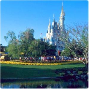 Viagens Para Disney 2010 Pacotes